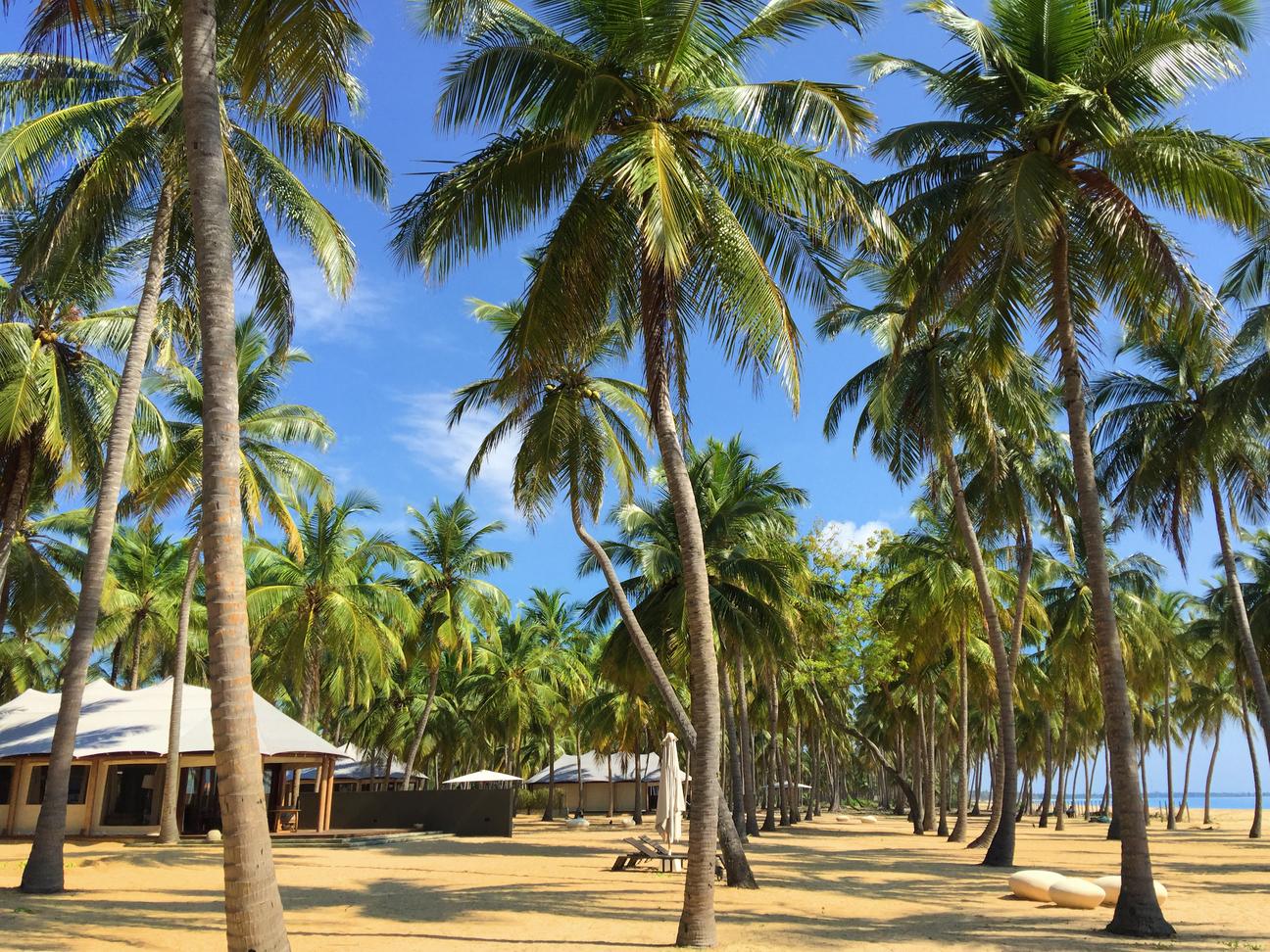 Karpaha Sands at Kalkudah Beach